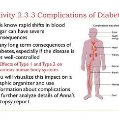 Kidney Cell Diagram Labeled Cinderella Plot Powerpoint 2.3 Life With Diabetes. - Ppt Video Online Download