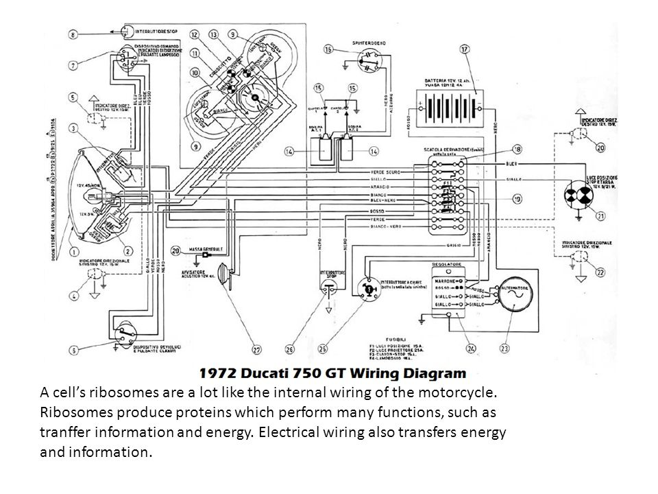 Wiring Diagram For Bmw R75 6 Bmw R90 6 Wiring Diagram