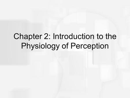 Sensory Receptors and the Eye. How sensory receptors work