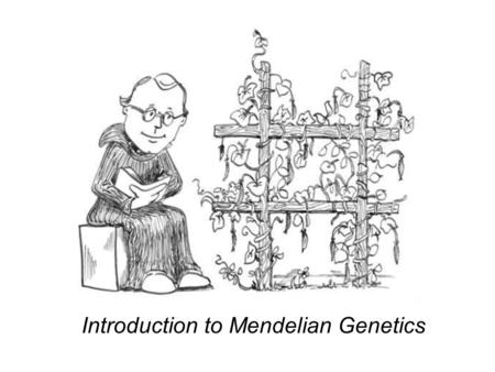 1 Section A: Gregor Mendels Discoveries MENDEL AND THE