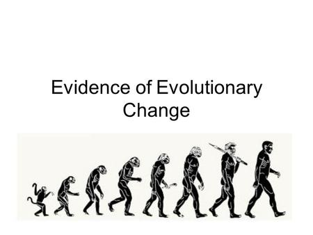 Lesson Overview Lesson Overview Evidence of Evolution