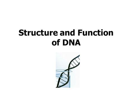 Gene Mutations. Try the mutations activity What different