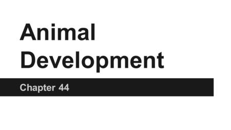 Ch28: Human Development Explain the stages of development
