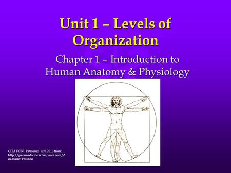 Chapter 1 Introduction To Human Anatomy And Physiology Answer Key ...