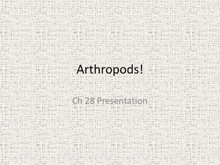 Chapter 28 Arthropods Section 1 Characteristics of