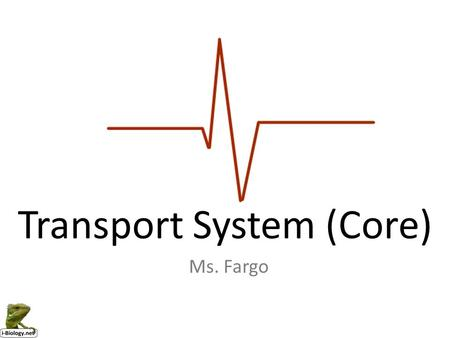 The Transport System Mr. Tamashiro Draw and label a