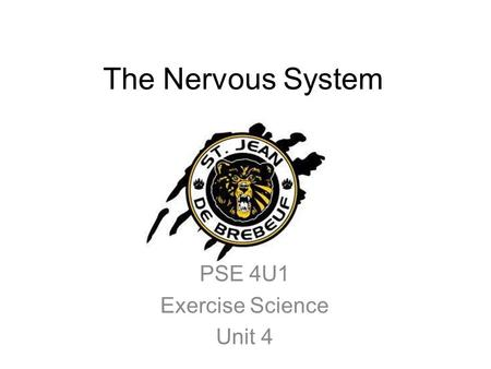 Exercise Science Section 6: The Nervous System and the