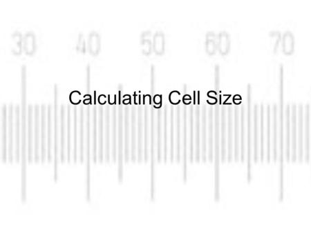 Scale Bars Scale Bars: images often carry a scale bar