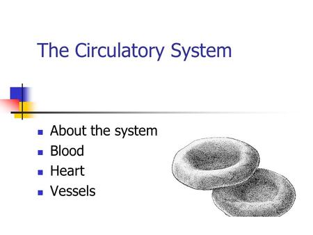 Diagrams from Wednesday. Fibrinogen Ca Blood vessel is