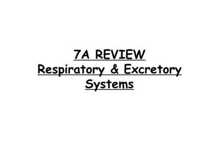 Chapter 20 Respiration and Excretion. Section 1- The
