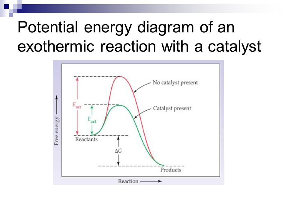 Energy Diagram For Exothermic Reaction With Catalyst Diy