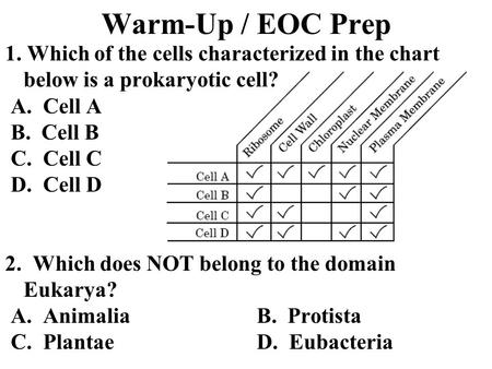 Kingdom Protista Mrs. Leary. Facts Eukaryotes