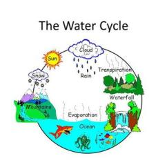 Water Cycle Diagram With Questions Worcester Bosch Boiler Wiring The By Owh Ppt Video Online Download Link Where Do Puddles Go Essential Question How Does Move