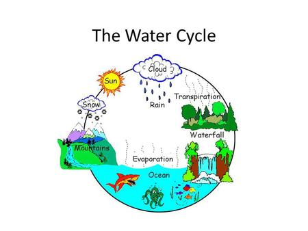 water cycle diagram with questions 93 s10 stereo wiring the by owh ppt video online download link where do puddles go essential question how does move
