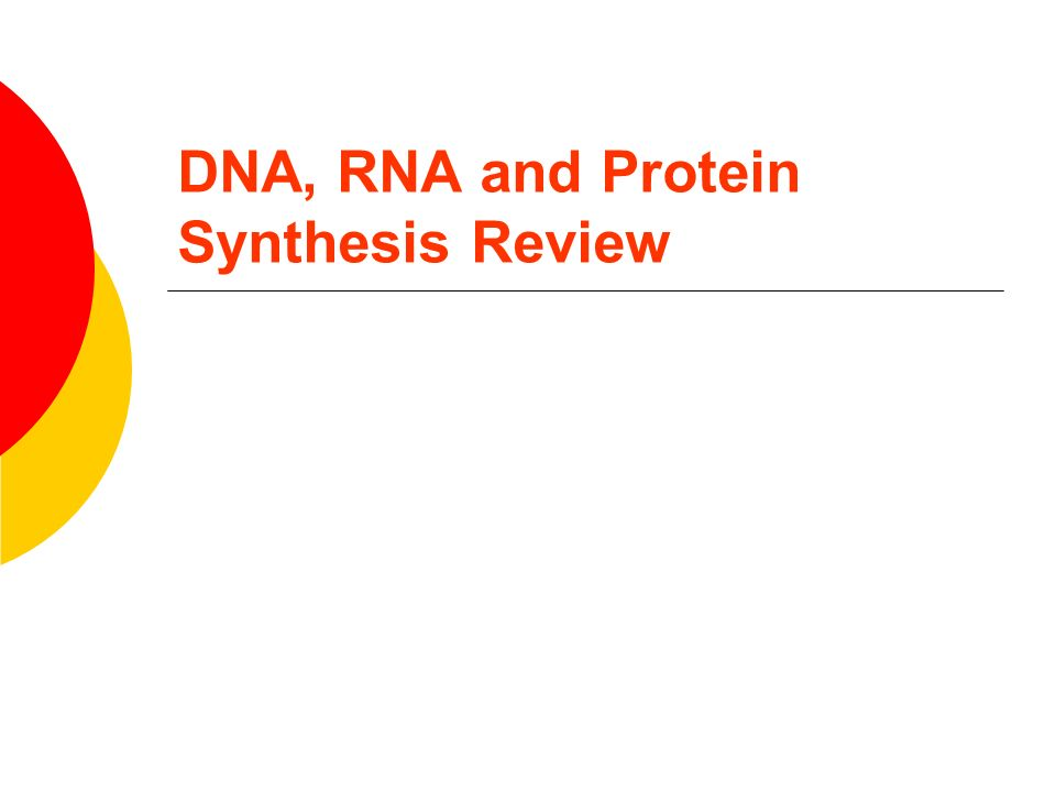 Dna, Rna And Protein Synthesis Review  Ppt Video Online Download