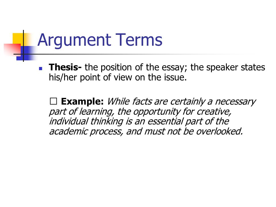 position argument essay example