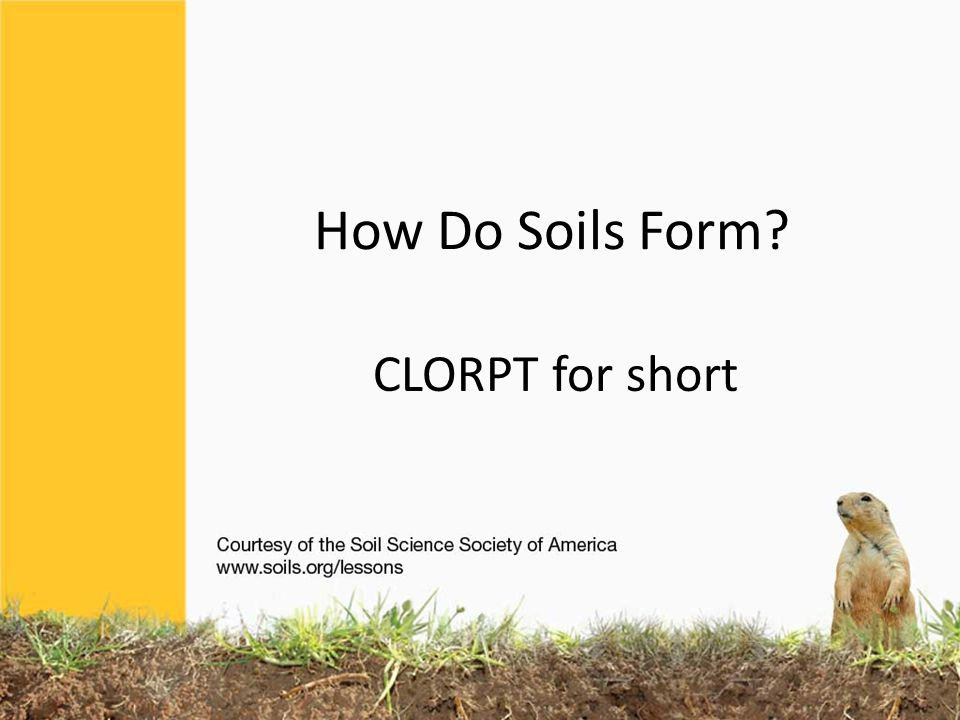 How Do Soils Form? CLORPT For Short Ppt Video Online