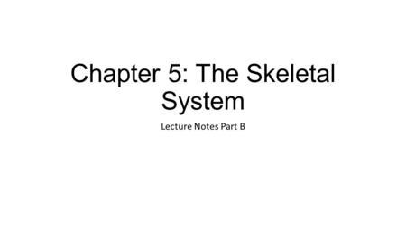 Skeletal System Notes-Part 2. Bone Formation Ossification