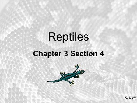 Chapter 20 Reptiles. Introduction Class Reptilia Order