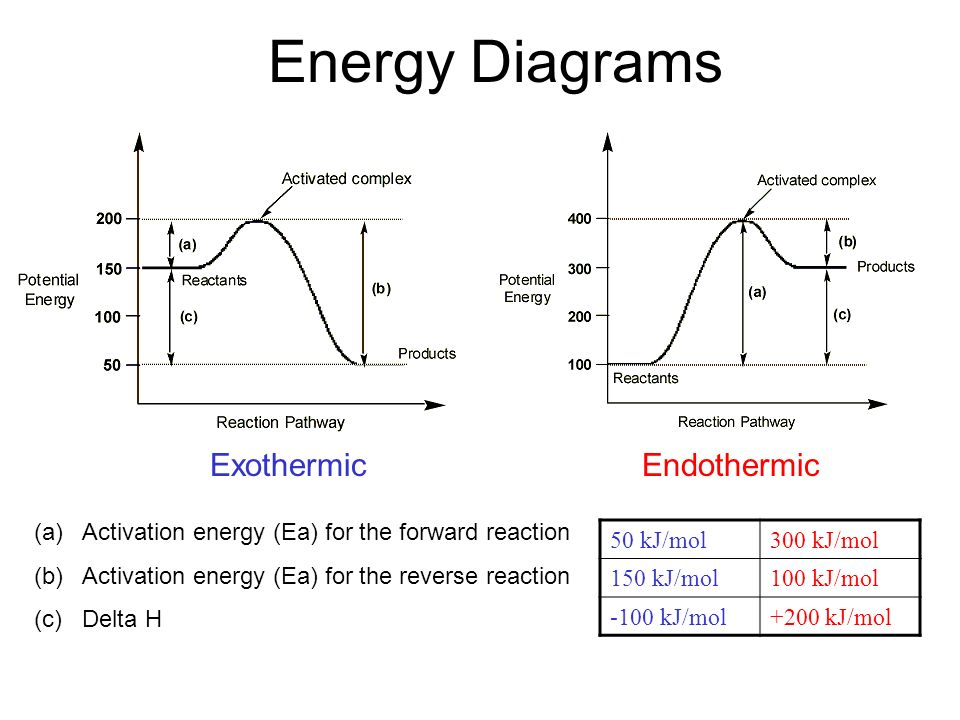 Activation Energy Diagram Of Exothermic