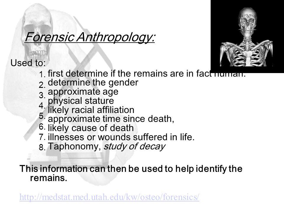 Bones are the framework of the vertebrate body and thus
