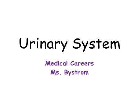 Review The Urinary System. Review Name the three main