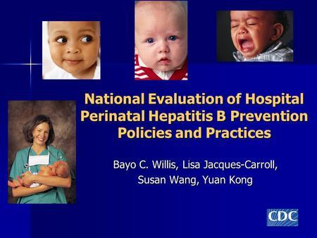 Perinatal Hepatitis B Programs