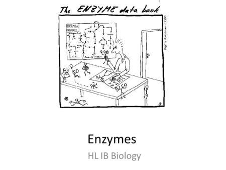Chapter 5: Cellular Processes Pg. 85 Enzyme Regulation