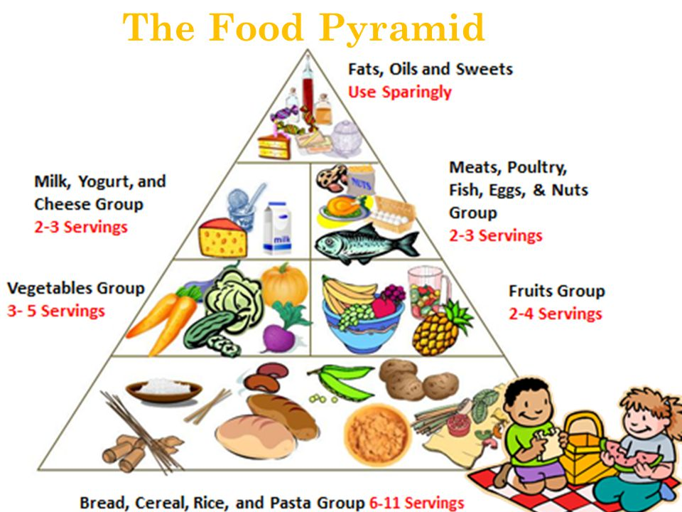 Food  Fuel for my Body  ppt video online download