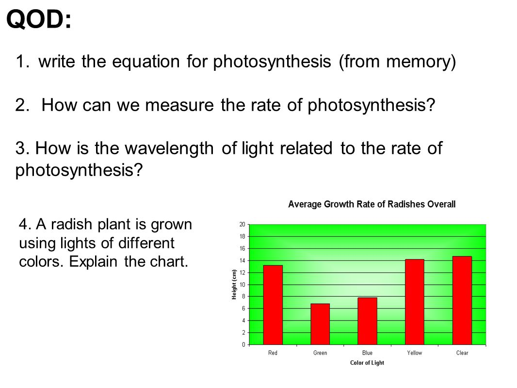 Write The Equation For Photosynthesis