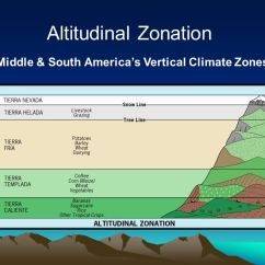 Tropical Rainforest Diagram Bf Falcon Ute Wiring Latin America Climate – Environmental Geography - Ppt Video Online Download