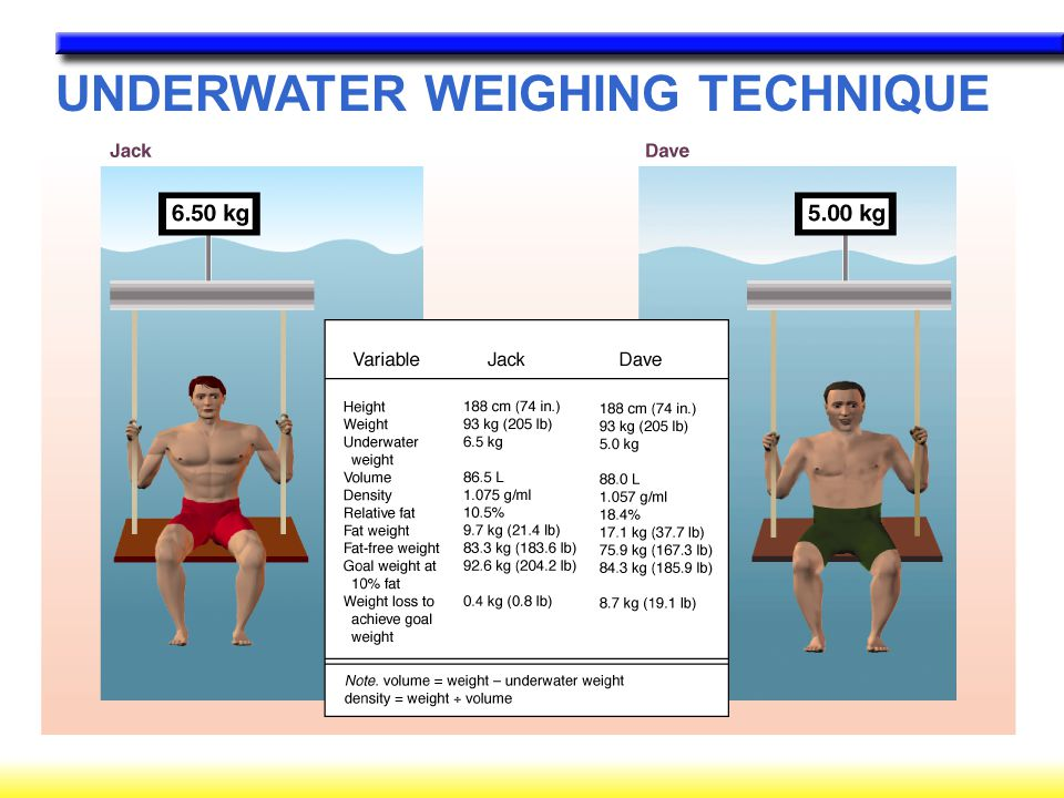 Body Composition Assessment Ppt Video Online Download