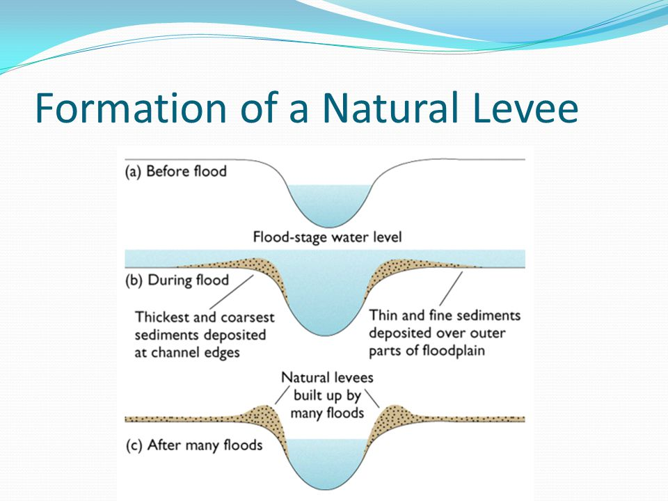 levee cross section diagram physics energy flow artificial