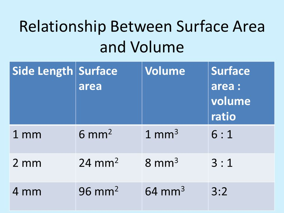 What Relationship Between Surface Area And Volume