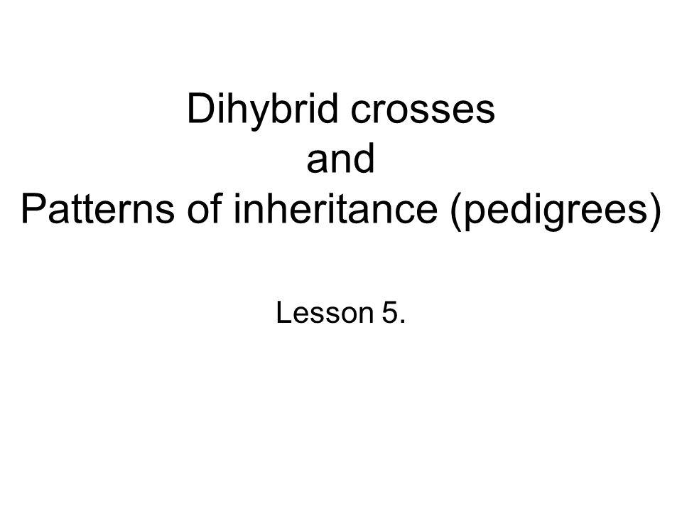 Dihybrid crosses and Patterns of inheritance (pedigrees