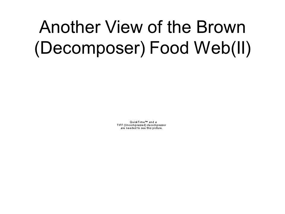 READINGS: FREEMAN Chapter ppt video online download