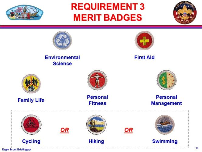 Eagle Scout Merit Badge Requirements The Best Eagle 2018