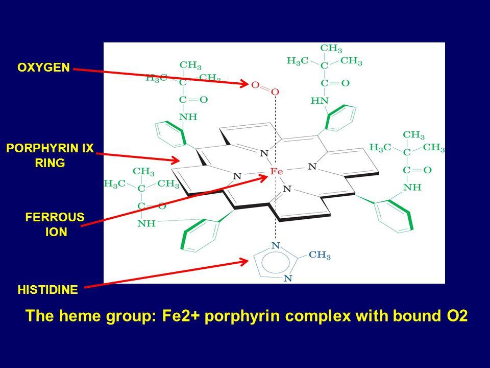 Oxygen Binding Proteins  ppt video online download