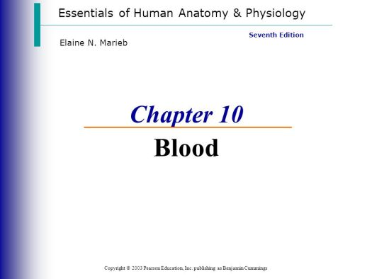 Essentials Of Human Anatomy And Physiology Chapter 10 Answers ...