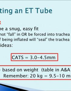 Intubation of dogs and cats ppt video online download also images endotracheal tube size spacehero rh superstarfloraluk