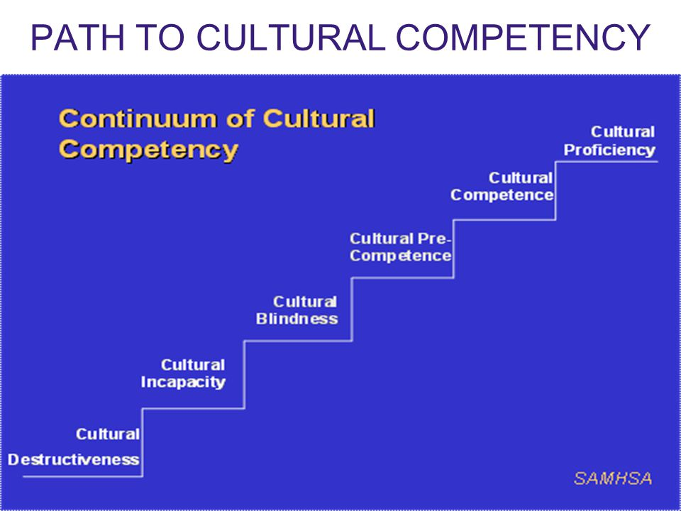 Enhancing Relationships Through Cultural Competence Ppt