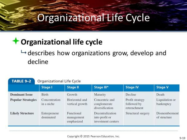 Organizational Influences And Life Cycle Ppt Video - MVlC