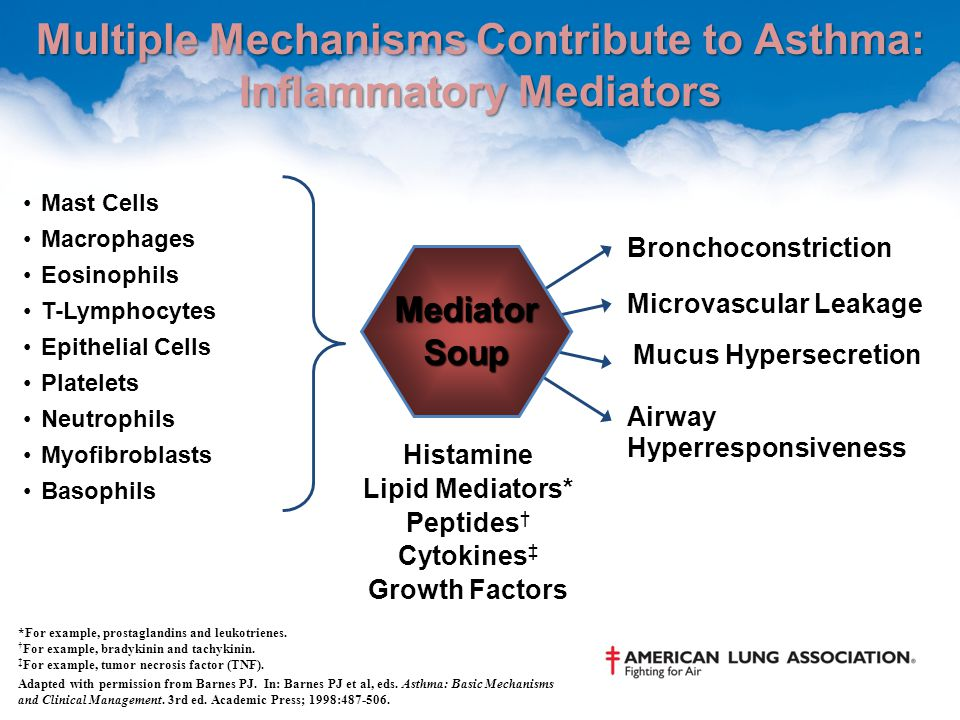 Asthma Pathophysiology Asthma Overview Ppt Download