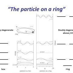 Energy Level Diagram For Nitrogen Structure Anatomy Unlabeled