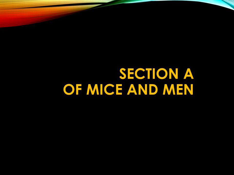 Men Mice Symbol And Mice