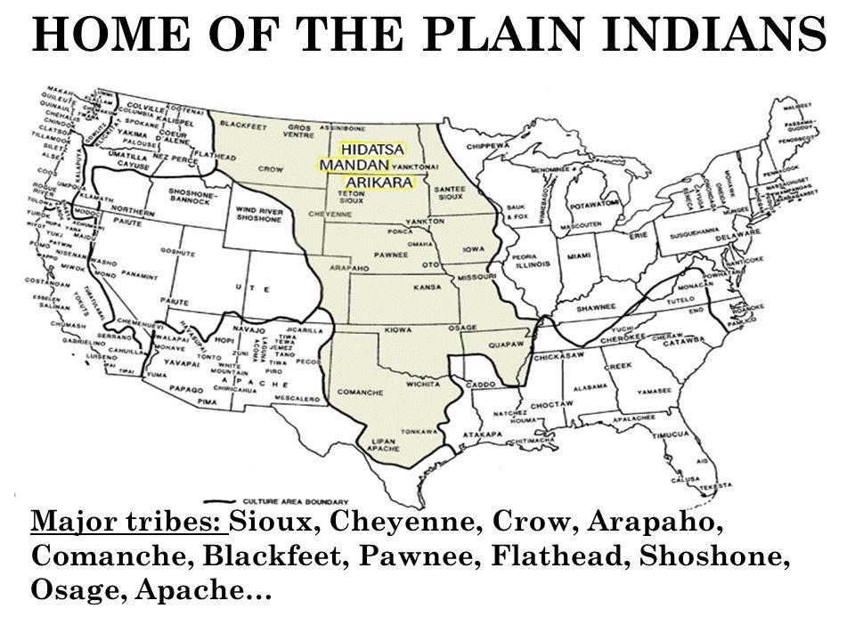 Indians Buffalo Cheyenne Hunting