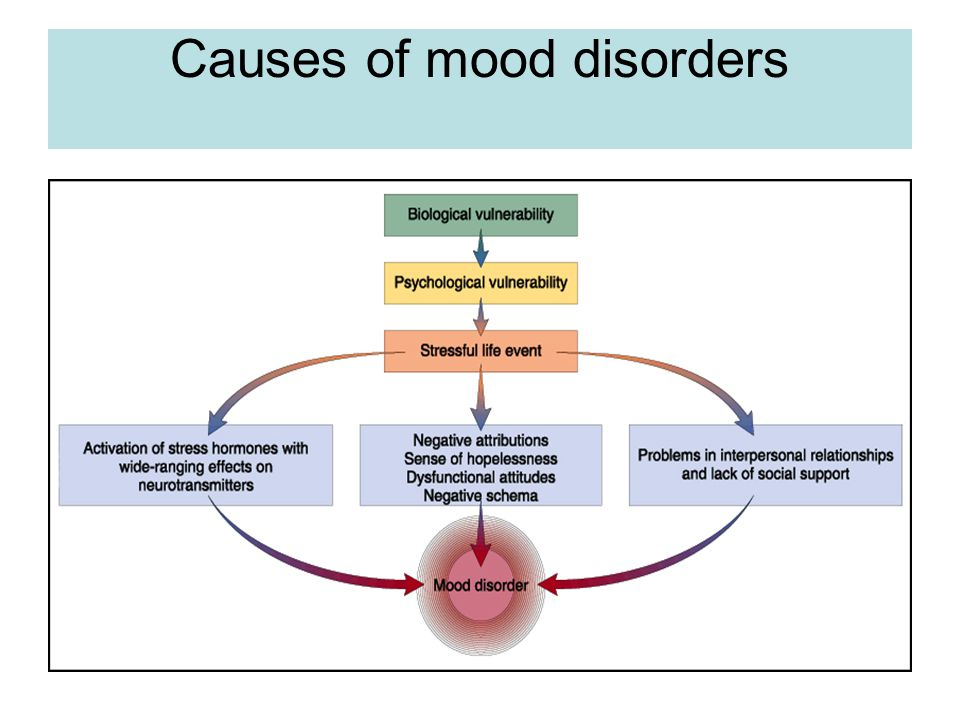 Bipolar Disorder Effects Family