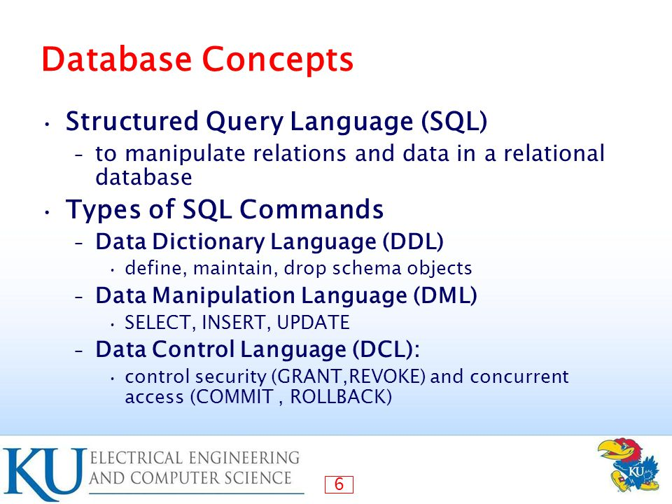 Database Security Queries