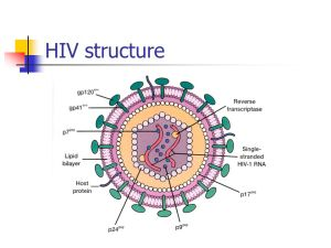 List of Synonyms and Antonyms of the Word: hiv diagram