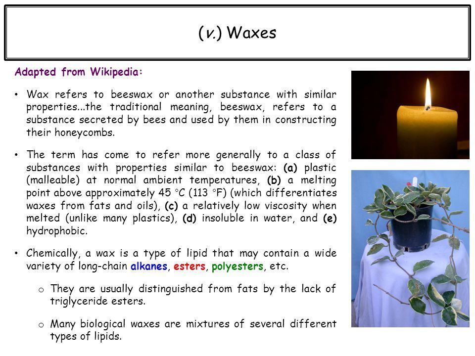 Chapter 10 Lipids  ppt video online download